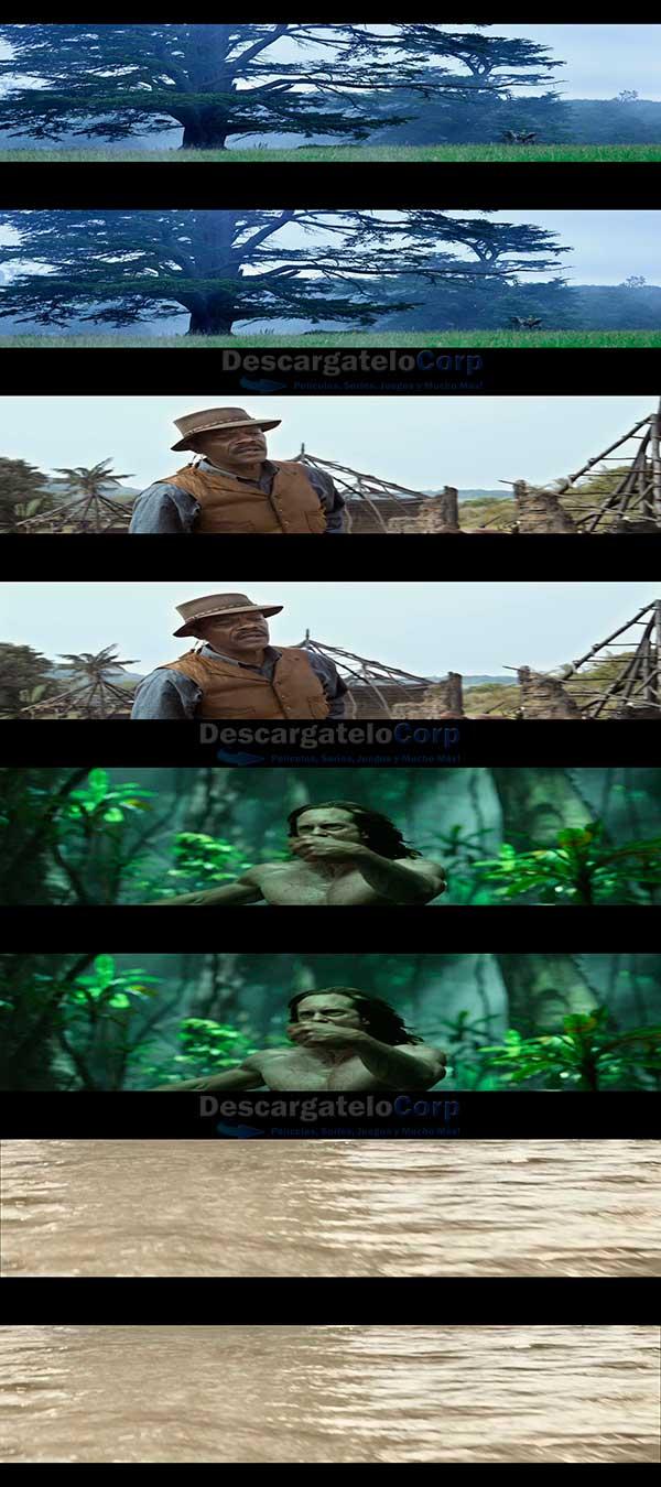 La Leyenda de Tarzan 3D Español Latino