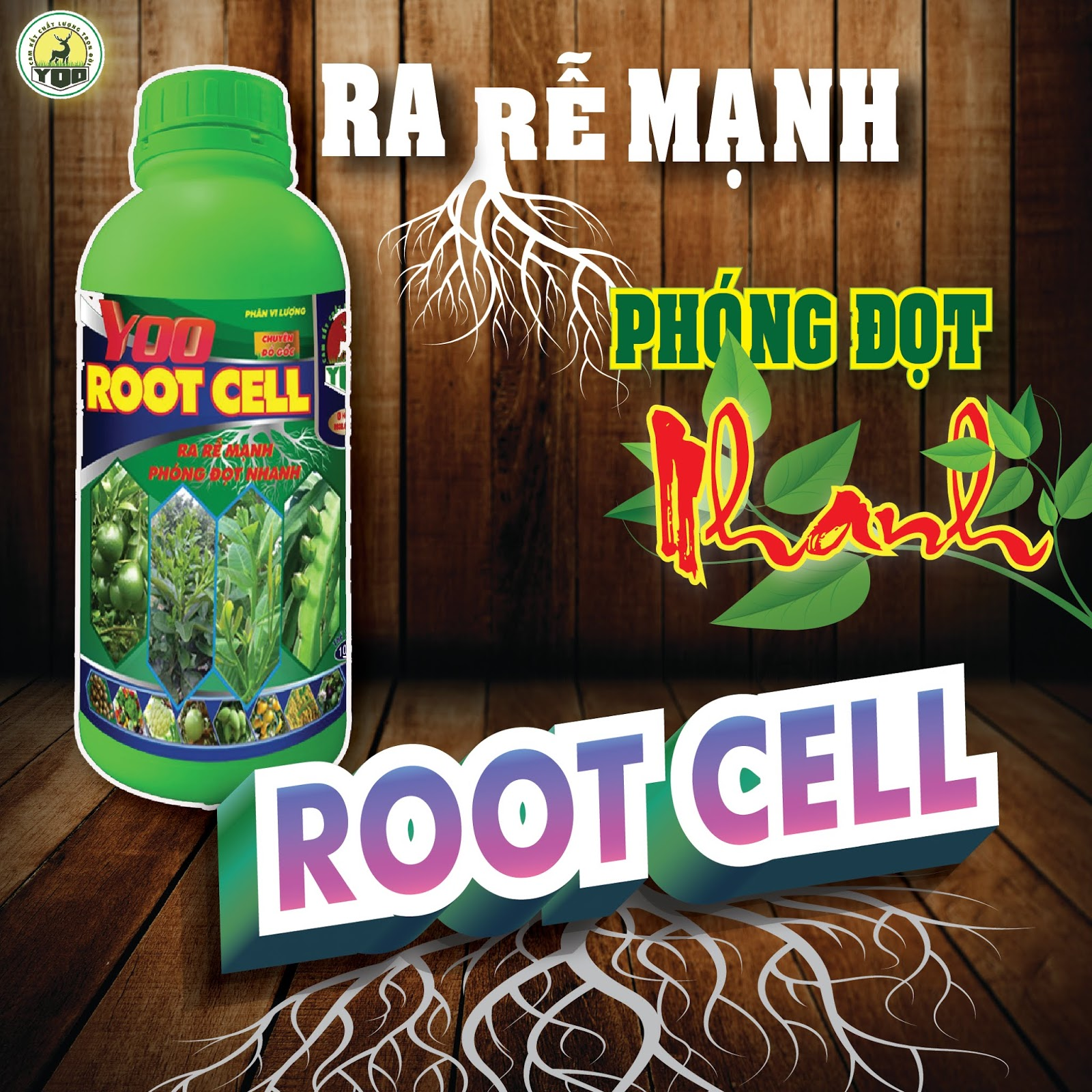 YOO ROOT CELL