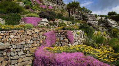 St Michael's Mount: terrazas ajardinadas en una pequeña isla mareal de Cornualles
