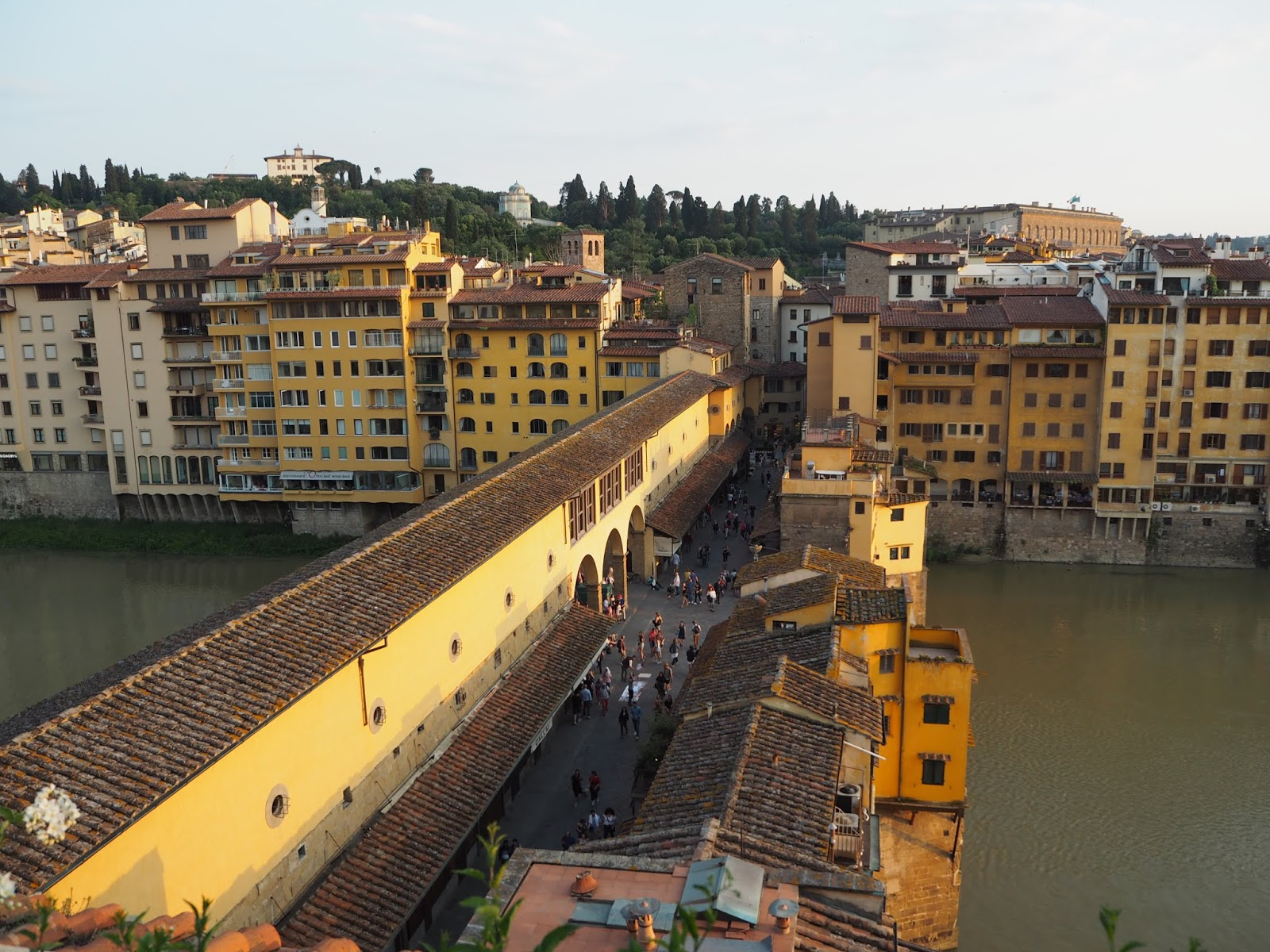 Ponte Vecchio in florence shot from the rooftop terrace of continentale hotel