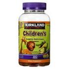 Kẹo dẻo bổ sung Vitamin cho trẻ em Kirkland Children's Multivitamin của Mỹ