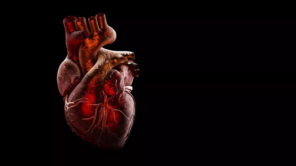 World Heart Day,World Heart Day date,World Heart Day images,World Heart Day quotes,World Heart Day wishes,World Heart Day photos,World Heart Day gretings,World Heart ,World Heart  massage