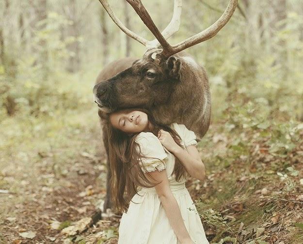 photos with wild animals