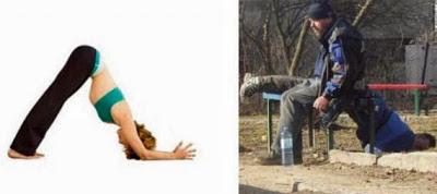 Vergleiche Bier und Yoga lustige Bilder