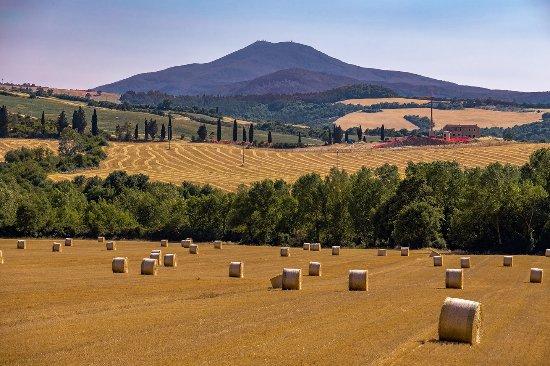 Gite in Toscana estate monte amiata
