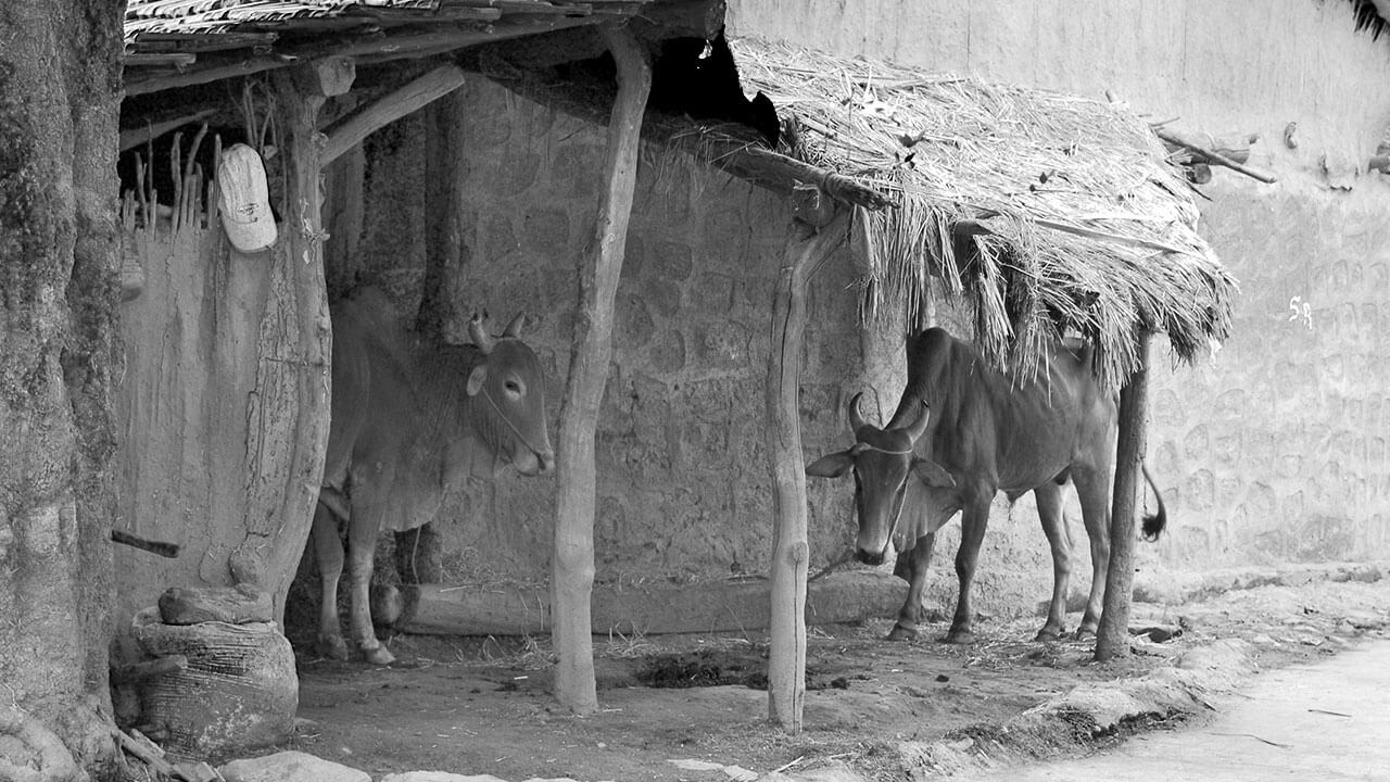 व्यथा शेतकऱ्याची - मराठी कविता | Vyatha Shetkaryachi - Marathi Kavita