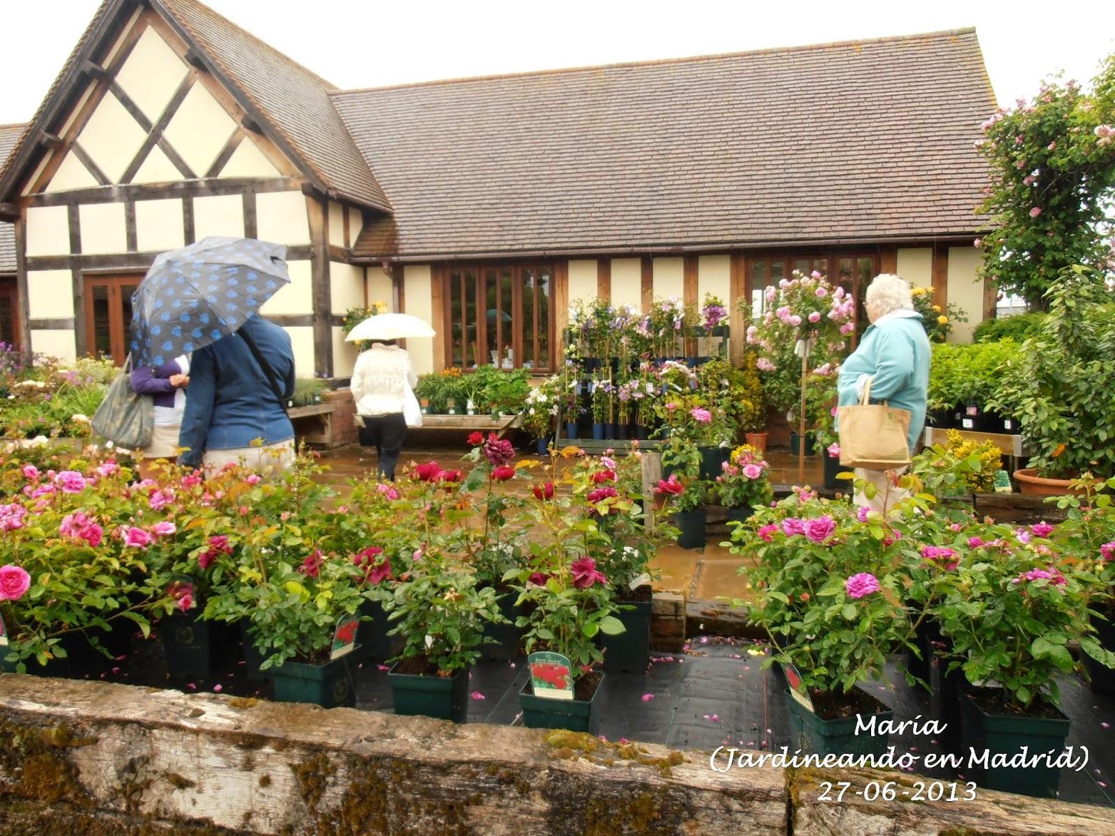 El Jard N De La Alegr A David Austin Roses Garden En Albrighton Inglaterra El Garden Center
