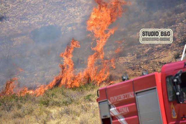 Πυρκαγιά στον Άγιο Δημήτριο (Μετόχι) του Δήμου Επιδαύρου