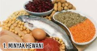 Minyak Hewani menjadi Makanan ini paling bikin gemuk