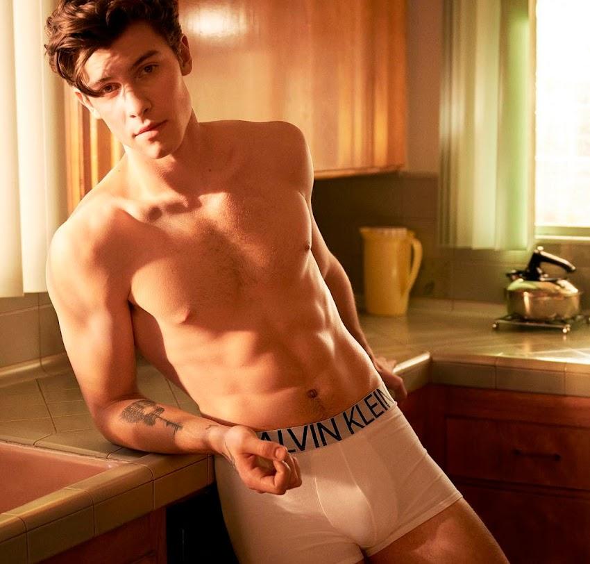 Por que os gays preferem as cuecas da Calvin Klein?