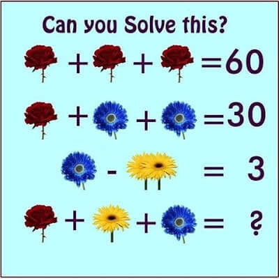 Maths Flowers Picture Equations Brain Teaser - Shake The Brain