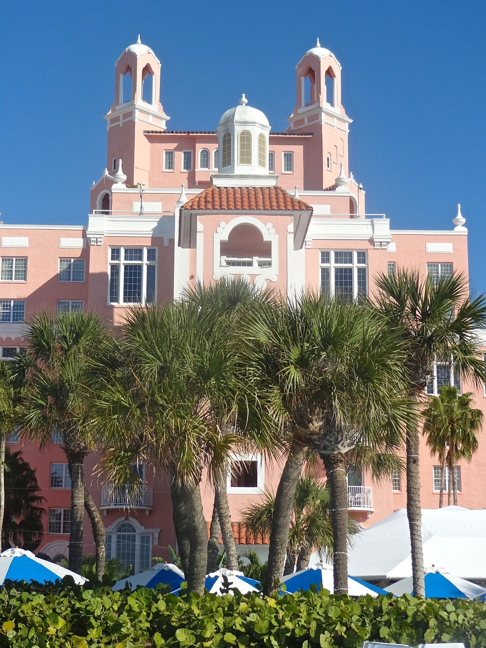 Scrumpdillyicious: The Don César: The Pink Palace Of St