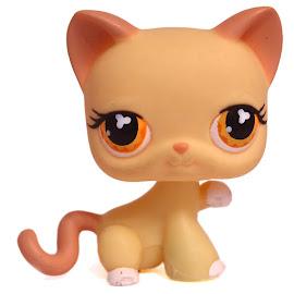 Littlest Pet Shop Large Playset Cat Shorthair (#533) Pet