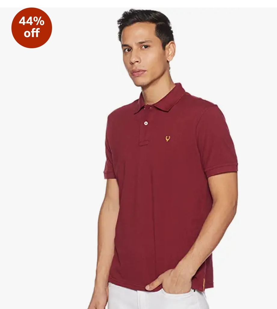 Allen Solly Men's Polo Branded T-shirt under 500