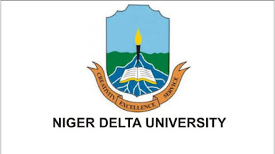 Full Steps On How To Check Your Result On The NDU Online Result Portal
