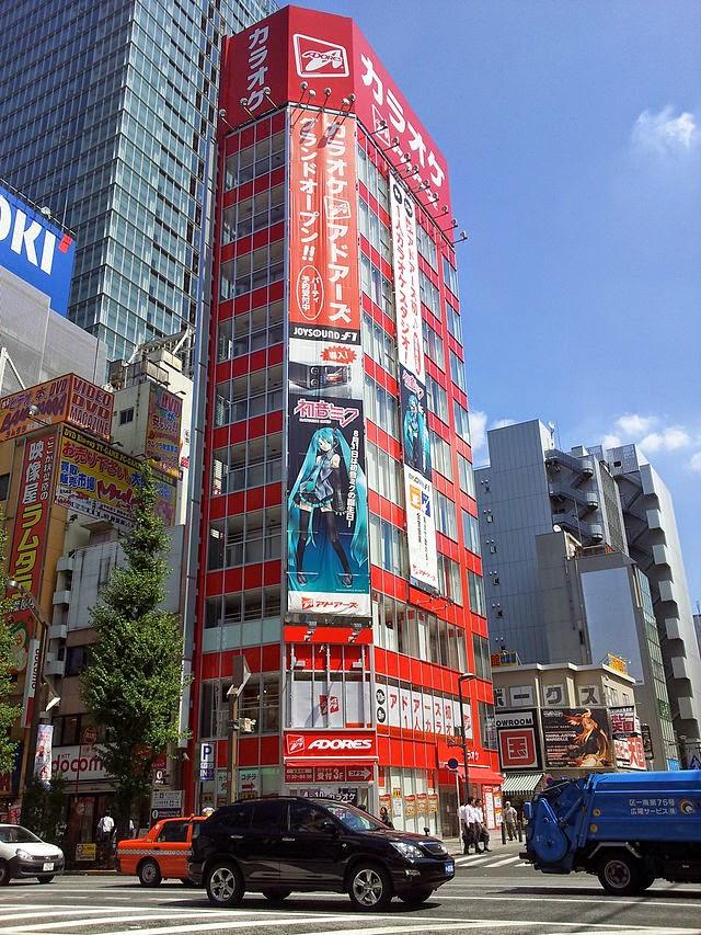 Unique Japan Tours Honeymoon Akihabara Karaoke