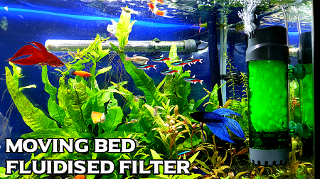 Setting up fluidized moving bed filter for aquarium