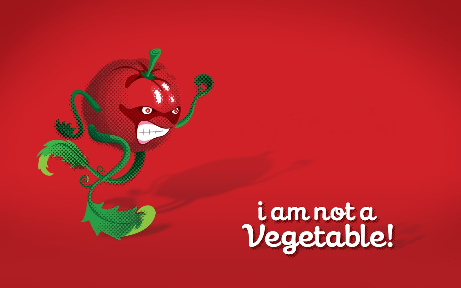 Tomato: is it a vegetable or fruit 26