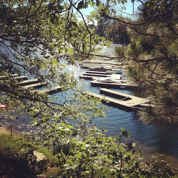 docks on the lake