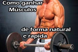 como ganhar musculos mais rapido na academia