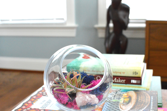 adding zen with Luludi terrarium
