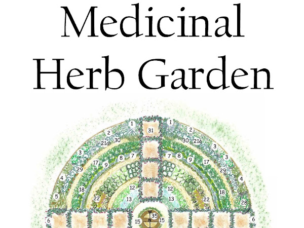 How to Plan a Medicinal Herb Garden
