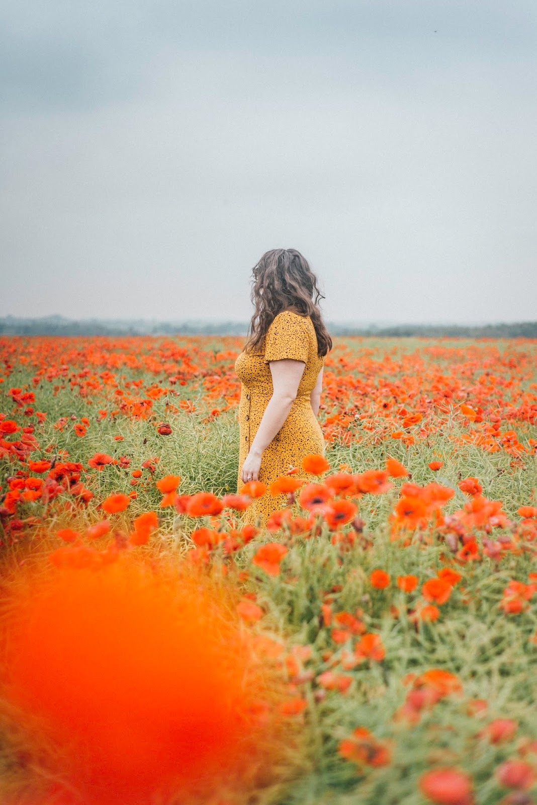 poppy fields yellow dress liquid grain liquidgrain