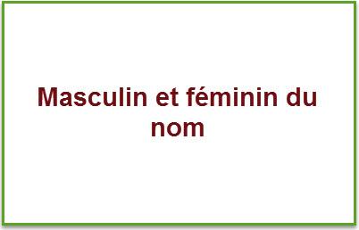 تعرف على قواعد المذكر والمؤنث في اللغة الفرنسية