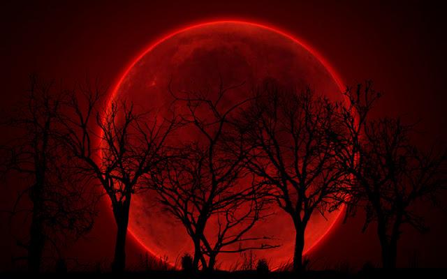 Trăng máu 2021