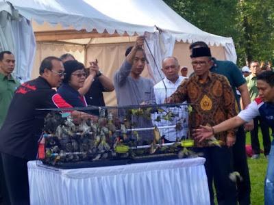 Murai Batu Jokowi Masuk Nominasi 10 Besar - Info Presiden Jokowi Dan Pemerintah