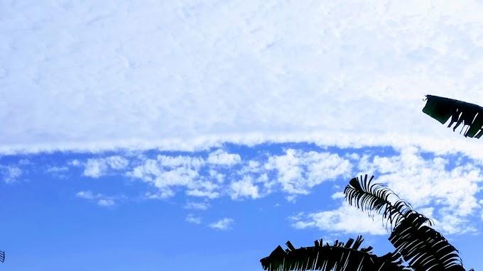 Langit biru, awan putih dan hijau daun pisang