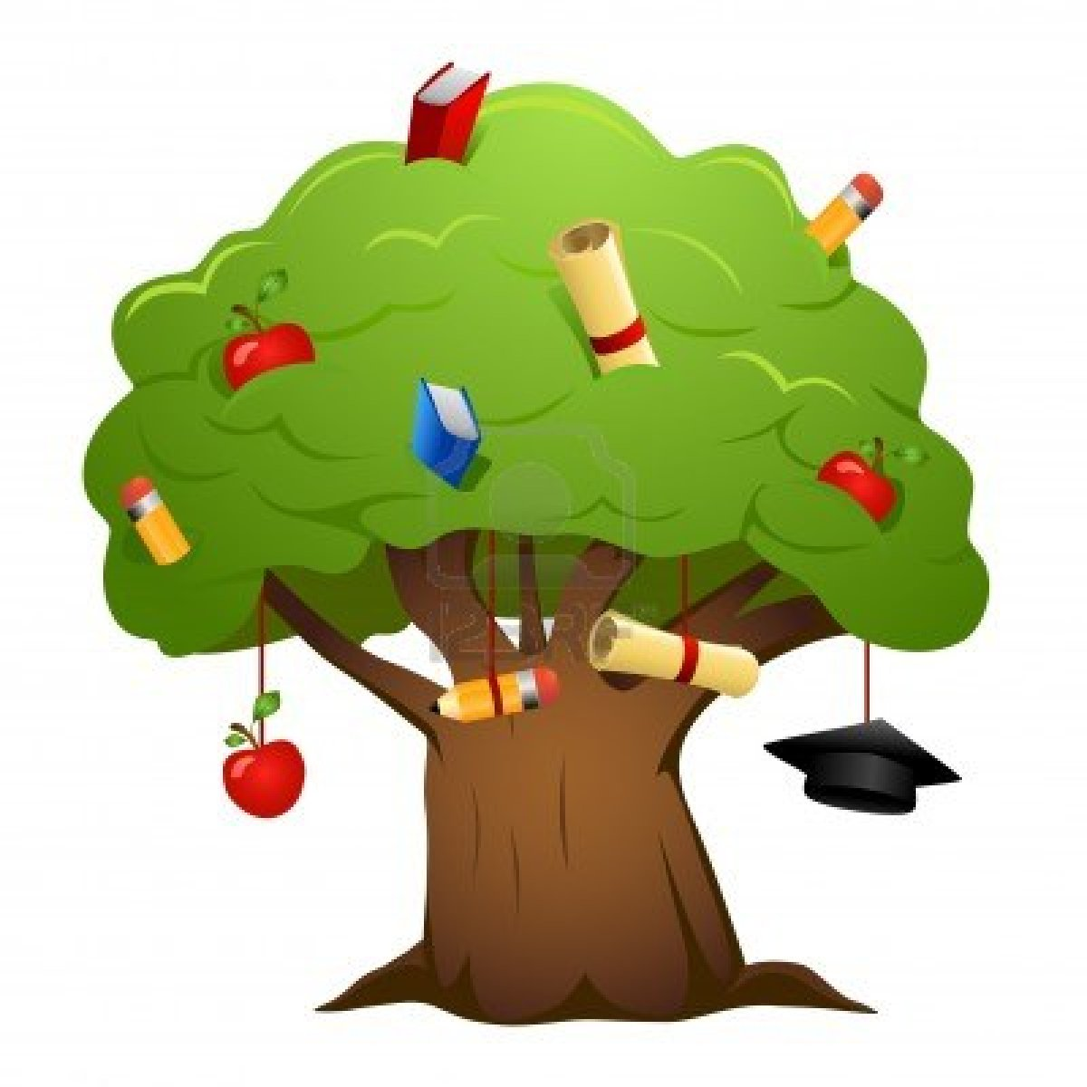 The Educated Genealogist Your Genealogical Education