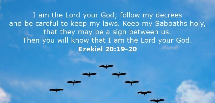 I am the Lord your God; follow my decrees and be careful to keep my laws. Keep my Sabbaths holy, that they may be a sign between us. Then you will know that I am the Lord your God.