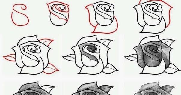 Cómo Hacer Paso A Paso Un Dibujo De Una Rosa Fondos De Pantalla