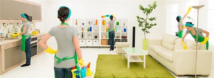 Fare Giren Ev Nasıl Temizlenir?