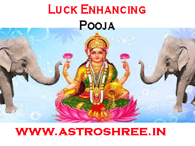 luck enhancing mahalaxmi pooja by astrologer