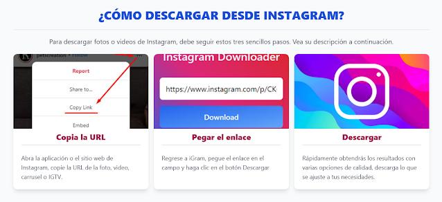 Pasos para descargar imagenes o videos de instagram en igram