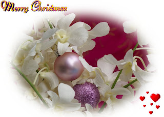 Merry christmas flowers cards designs.