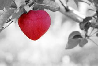 foto di una mela rossa a forma di cuore su sfondo bianco e nero
