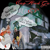Soundcloud MP3/AAC Download - Cop And Go by Sha Stuu - stream ep free on top digital music platforms online | The Indie Music Board by Skunk Radio Live (SRL Networks London Music PR) - Monday, 29 July, 2019