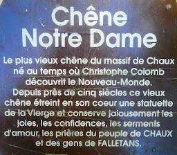 "Infos Chêne ""Notre Dame"""