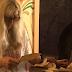 Έχασε το πορτοφόλι της πριν 46 χρόνια και της επεστράφη την περασμένη εβδομάδα - Δείτε βίντεο
