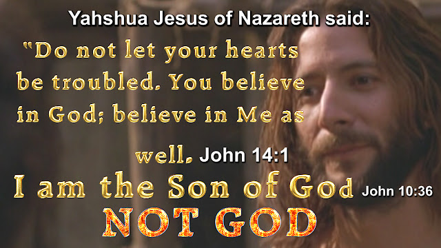 John 10:36. Jesus is the Son of GOD and not GOD the SON.