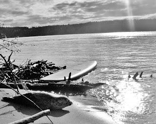Paddleboarding At Owen Beach in Tacoma, WA