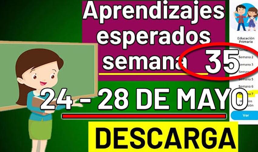 🧠🎒 DESCARGA los aprendizajes esperados de la semana 35 (24 - 28 de MAYO 2021)
