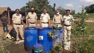आबकारी विभाग ने दबिश देकर जप्त की 40 लीटर महुआ शराब !aabakari vibhag ne dabish dekar japta ki 40 litar mahula sarab