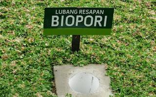 Cara hemat air dirumah dengan biopori