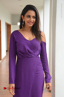 Actress Rakul Preet Singh Latest Stills in Beautiful Long Dress  0106.JPG
