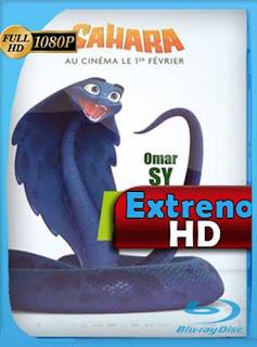 Sahara (2017) HD [1080p] Latino [GoogleDrive] SilvestreHD