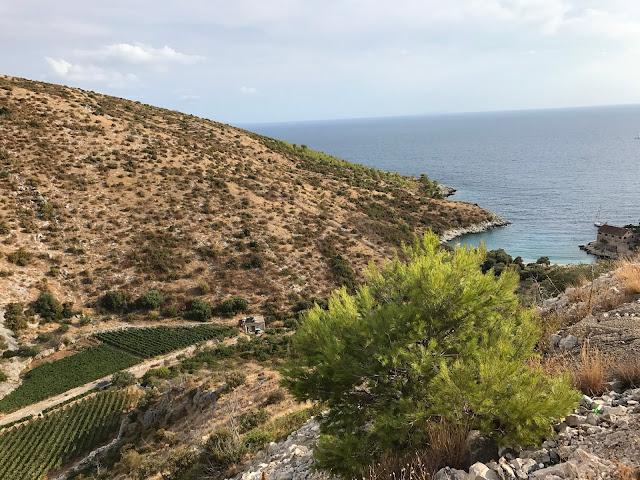 hvar-croatia-road-trip